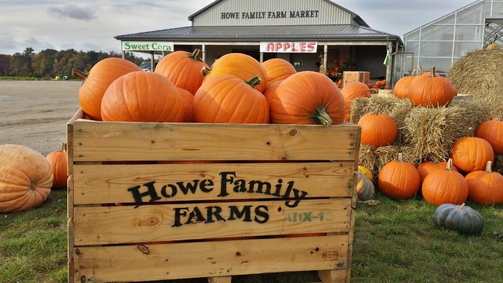 Ontario Pumpkin Farm Market